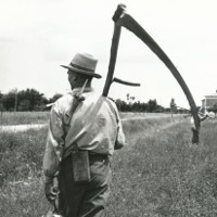 Il Mondo rurale in provincia