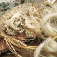 La canapa, il filo, la tela