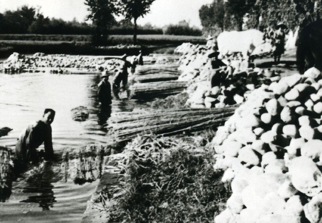 Lavatura delle mannelle di canapa che vengono poi estratte e poste sulle tregge trainate da buoi site ai bordi del macero; sullo sfondo due zattere di fasci di canapa ancora affondate, mediante sassi, e in corso di macerazione.