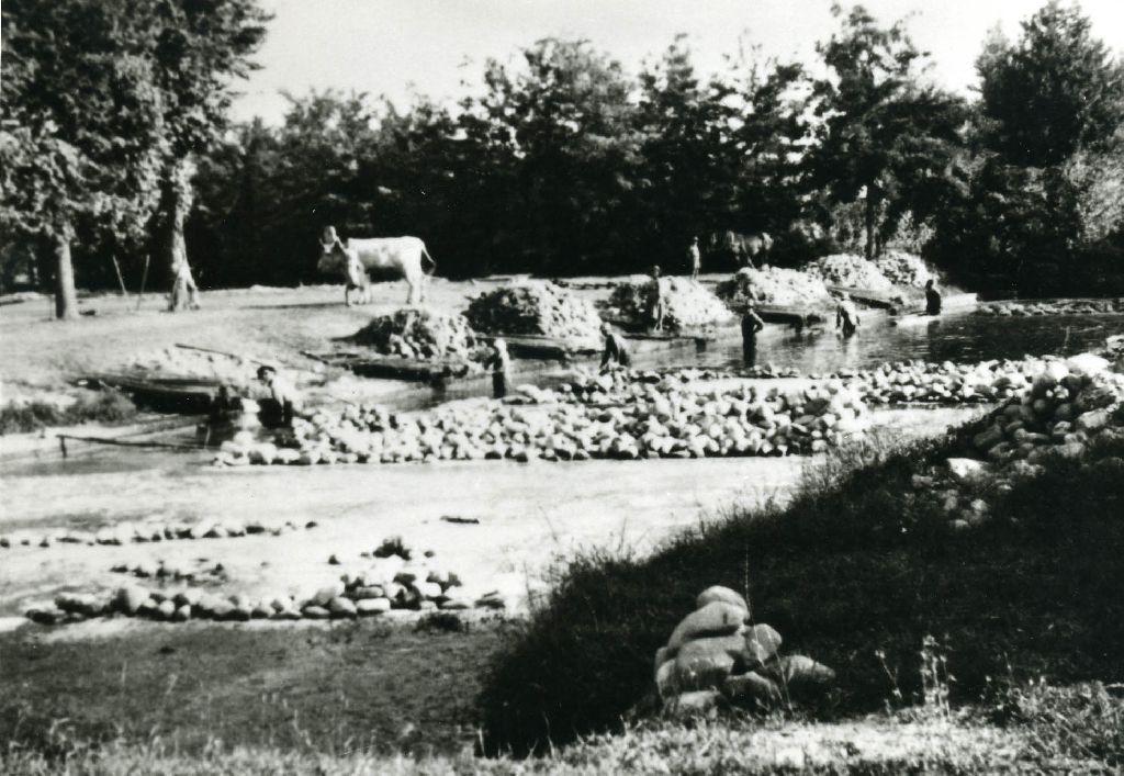 Lavatura ed estrazione dei fasci di canapa, che vengono caricati sulle tregge per il trasporto al luogo di essiccazione: nel macero sono ancora affondate, mediante il carico di sassi, alcune zattere.