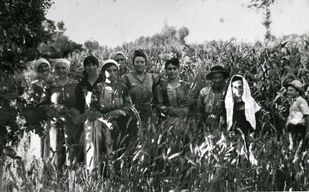 Gruppo di lavoro ripreso in un momento di pausa, fra un campo di frumento ed uno di mais.
