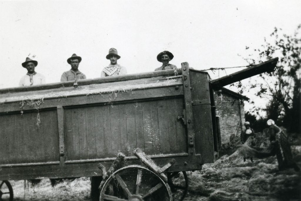 Decanapulazione: macchina gramolatrice in lavorazione; in secondo piano alcune donne intente alla formazione della mazzuola (insieme delle mannelle di canapa atte ad essere immagazzinate).