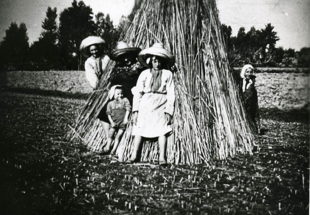 Gruppo di lavoro ritratto attorno agli steli della canapa tagliata posta sul campo in forma di cono per la prima essicazione.