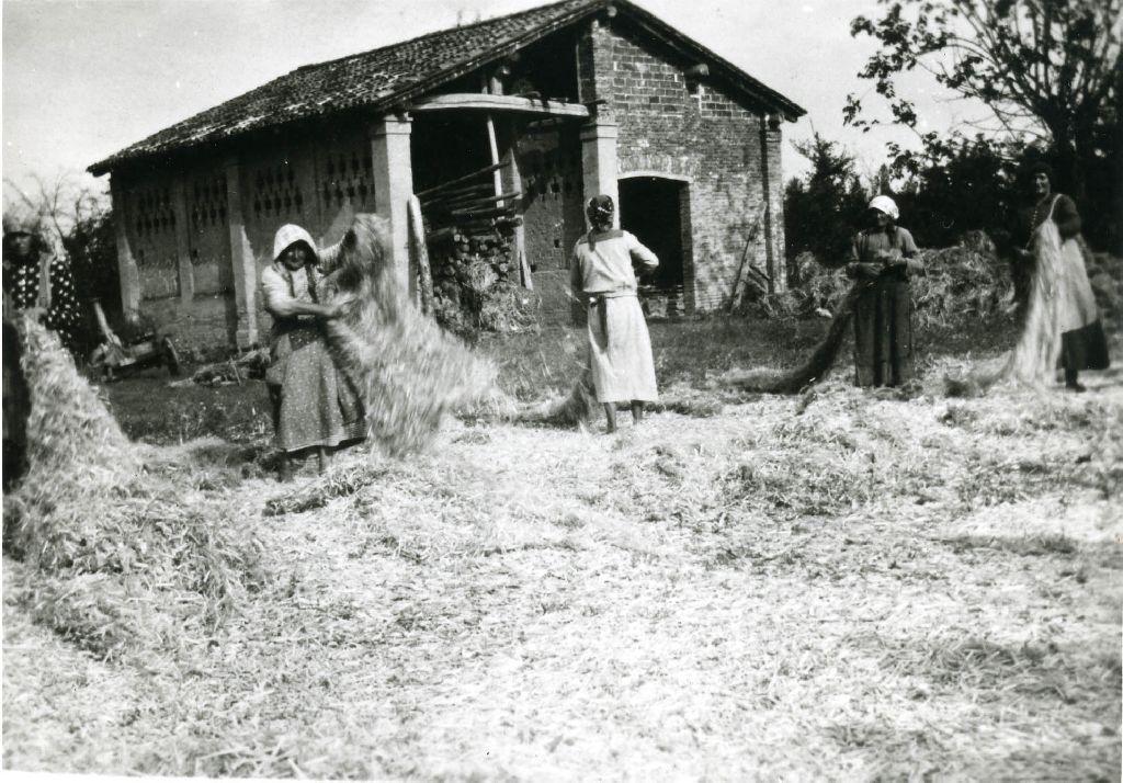 Donne intente alla liberazione della fibra della canapa scavezzata dai canapoli; in primo piano, a terra, i canapoli, resti del fusto frantumato dello stelo di canapa (fase di lavorazione: decanapulazione).