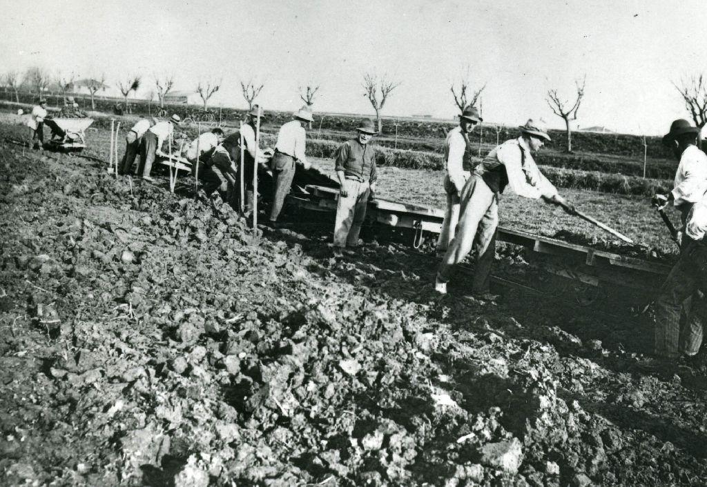 """Braccianti intenti nel lavoro di sistemazione del terreno e della preparazione del """"quadro di riso"""""""