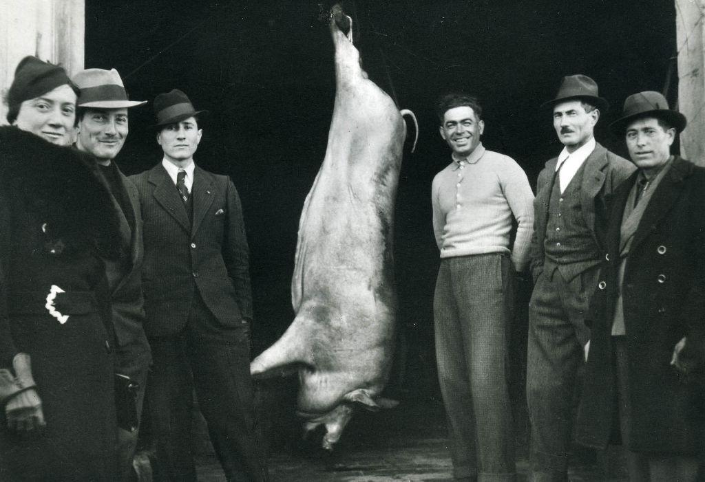 Gruppo attorno ad un maiale macellato pronto per il sezionamento e la lavorazione.