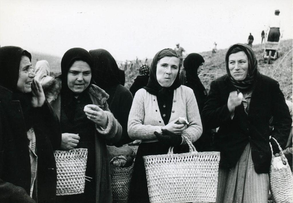 Gruppo di donne in un momento di riposo dal lavoro
